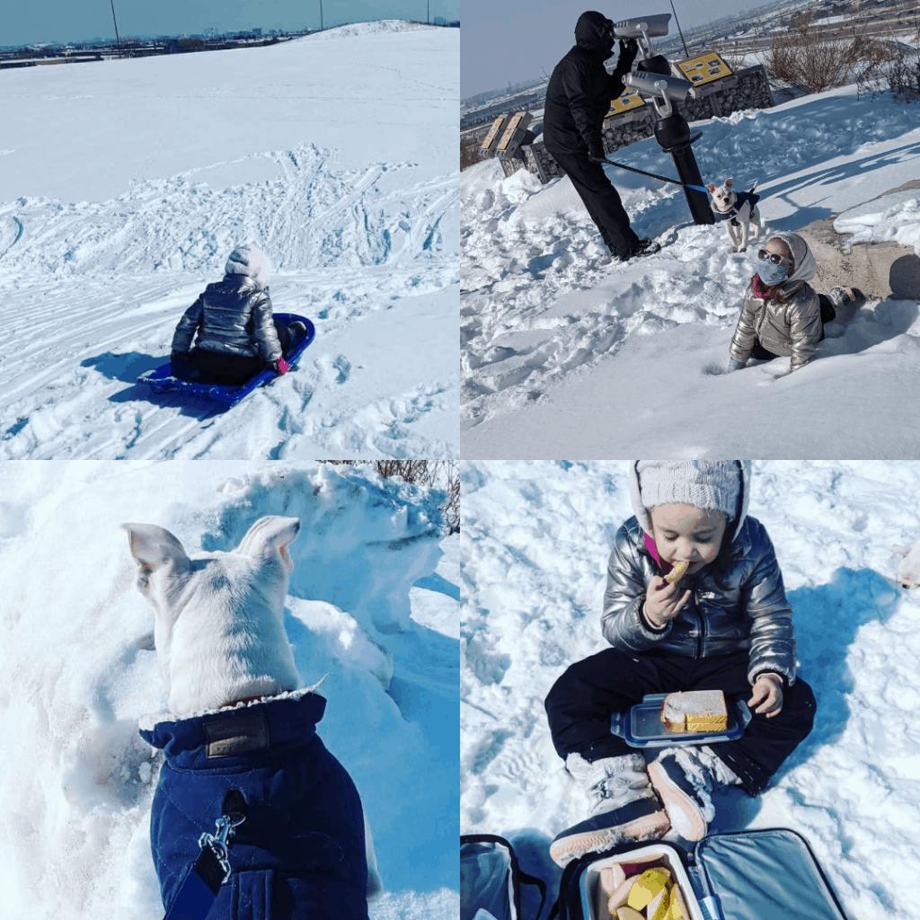 family winter fun at Danville park